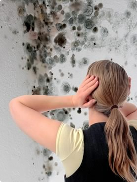 dangers of mould in your house
